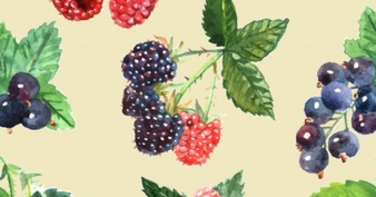 berry-seamless-pattern-with-strawberry-raspberry-black-currant_1284-13954