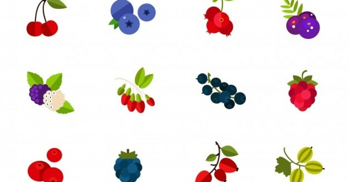 wild-cultivated-berries-icon-set_1262-4389